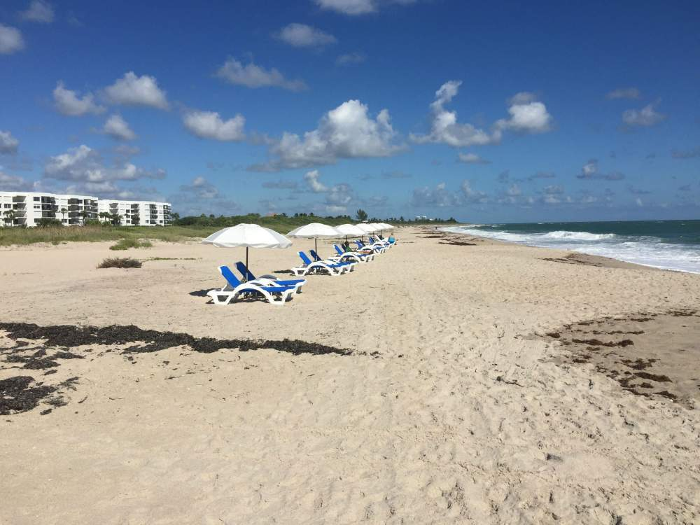 Wide stretch of beach behind hotel with beach lounge chairs